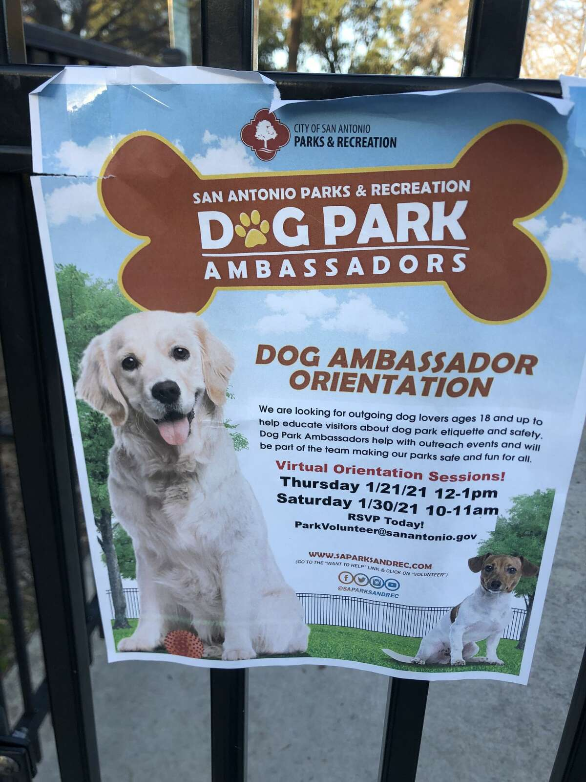 S.A. Parks & Rec is searching for dog park ambassadors to help educate park visitors and organize park events.