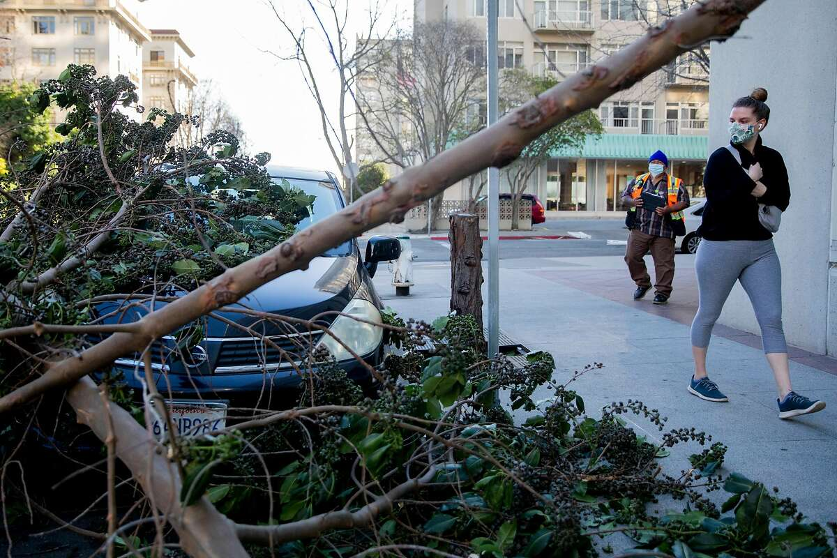 Pedestrians walk past a car that was pinned by a fallen tree near Snow Park in downtown Oakland, Calif. Tuesday, January 19, 2021 following a night and early morning of extreme winds across the Bay Area and beyond, causing multiple incidents of downed trees, power lines and other damage.