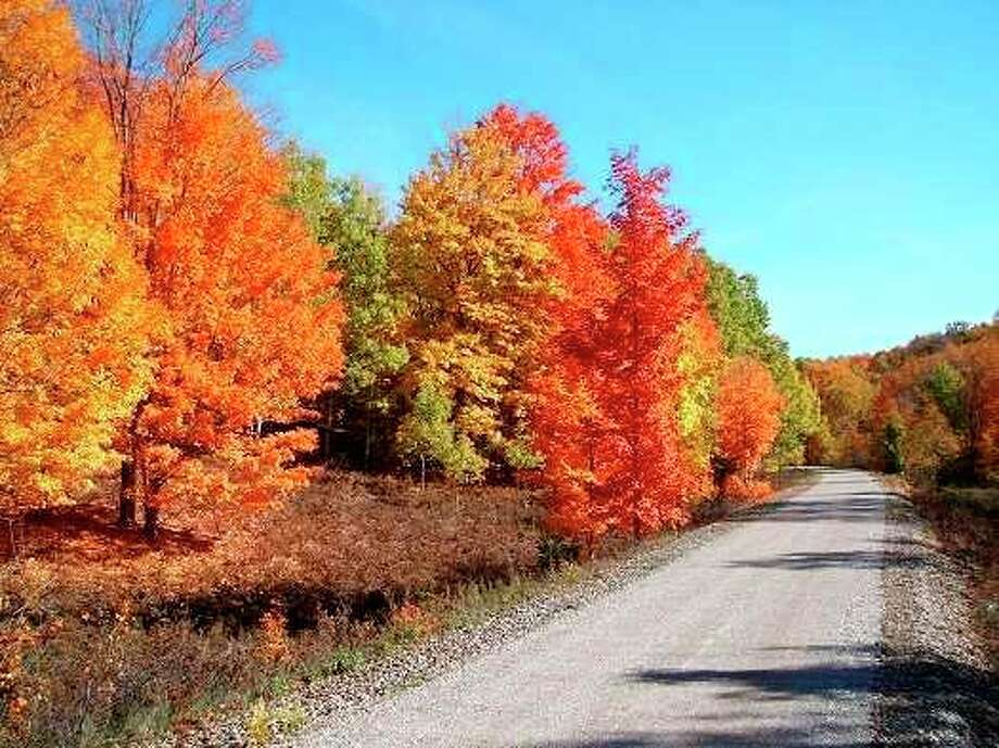 The Friends of the Betsie Valley Trail plan to improve the section of trail from Beulah to Thompsonville. (Courtesy Photo)