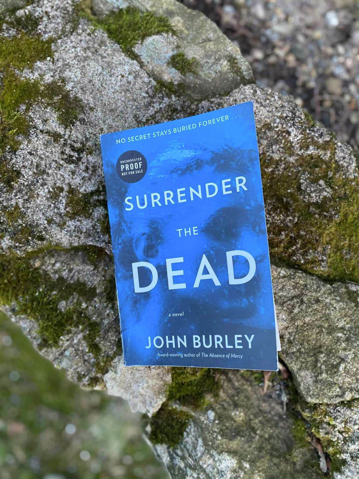 """""""Surrender the Dead"""" is the latest book by John Burley."""