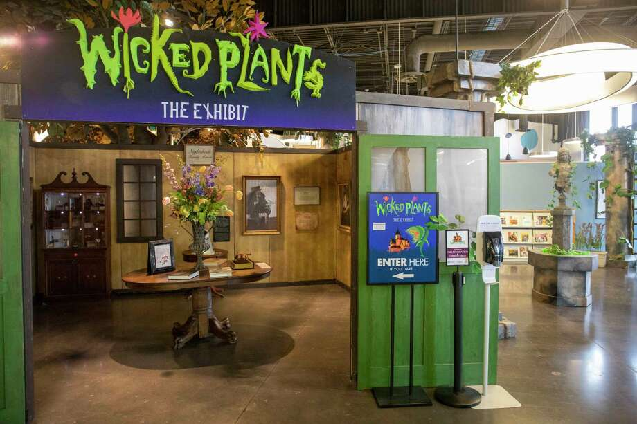 """'""""Wicked Plants"""" is now on display as seen Wednesday, Jan. 20, 2021 at Midland County Centennial Library.  Jacy Lewis/Reporter-Telegram Photo: Jacy Lewis/Reporter-Telegram"""