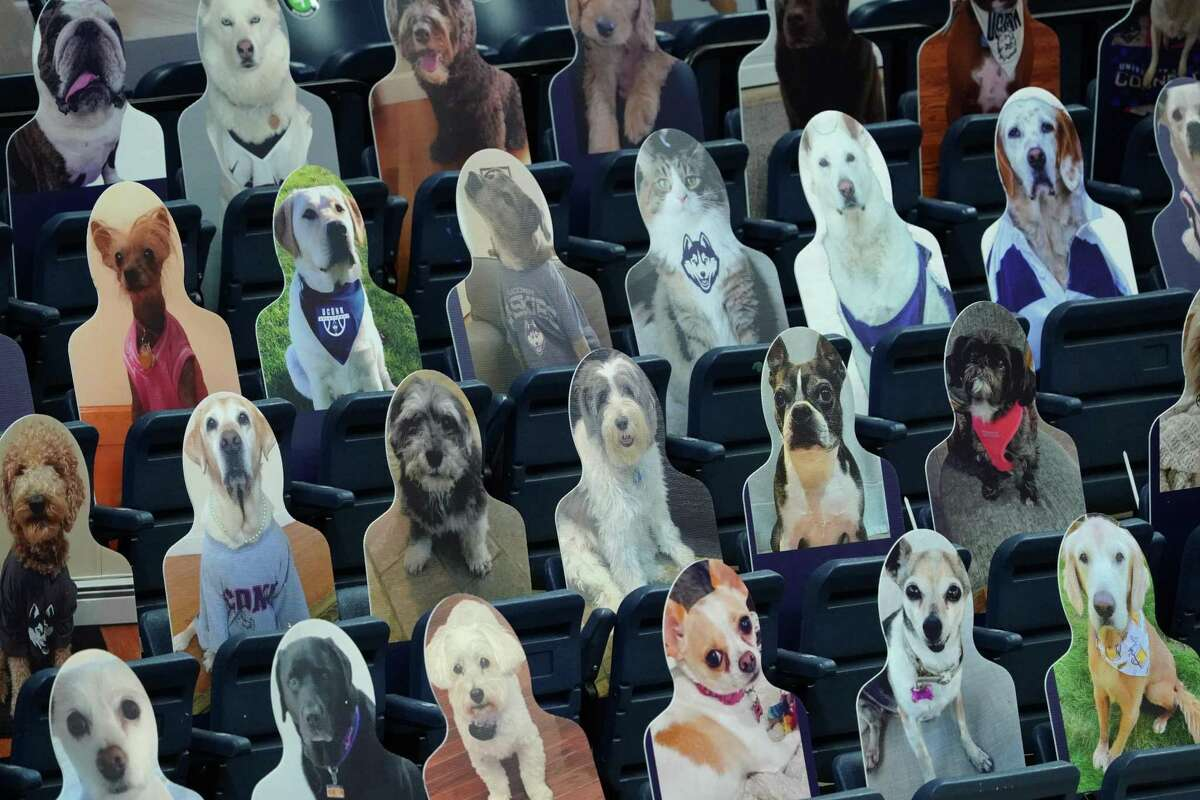 Dec 12, 2020; Storrs, Connecticut, USA; Cardboard cutouts fill the seats at Harry A. Gampel Pavilion before the game against the Connecticut Huskies and Massachusetts Lowell River Hawks at Harry A. Gampel Pavilion. Mandatory Credit: David Butler II-USA TODAY Sports