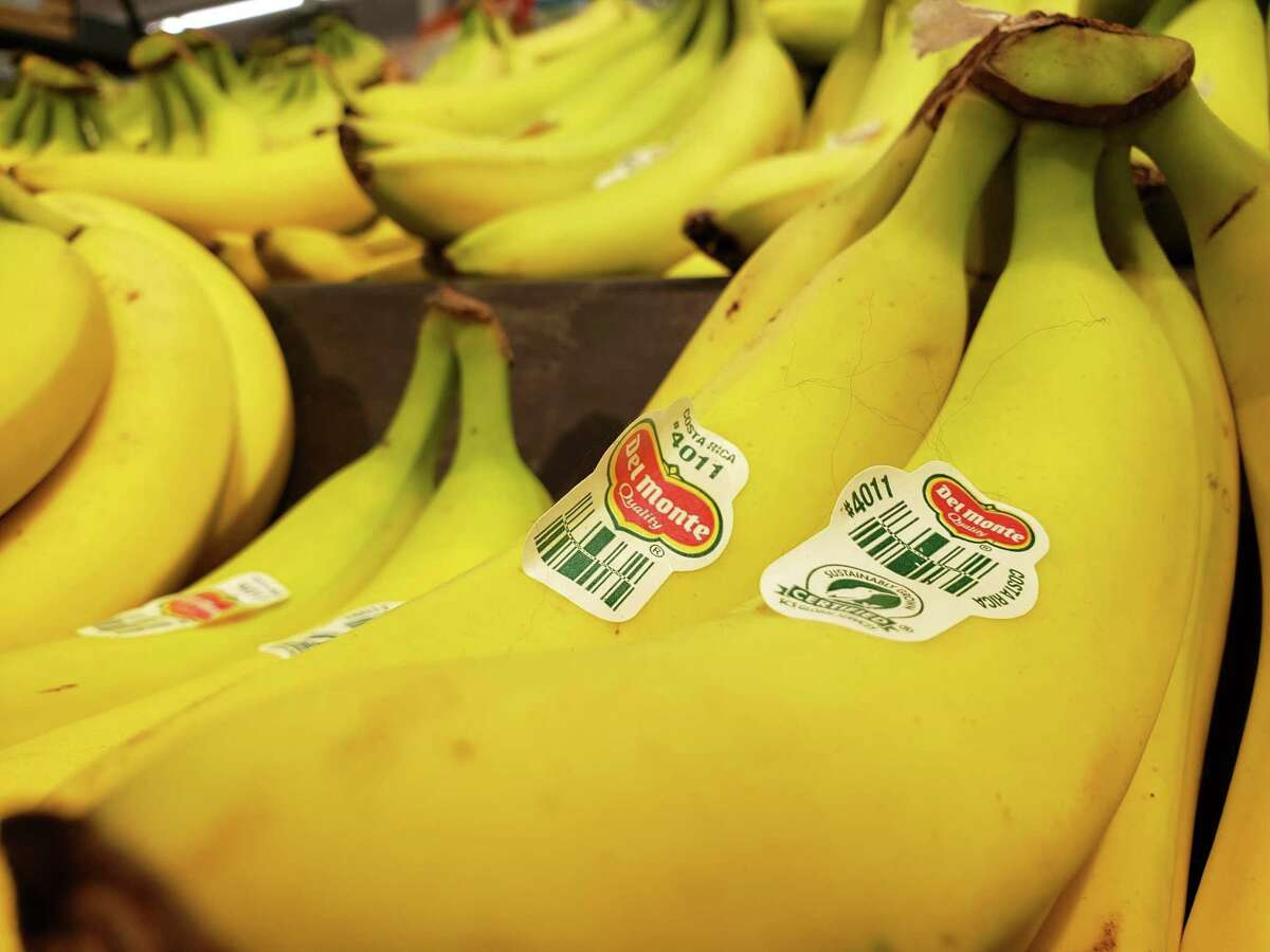 Most of the bananas seen in American stores come from Central America.