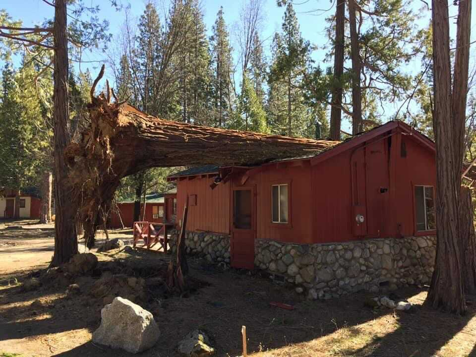 'Like a bomb went off': Yosemite-area towns destroyed after powerful winds