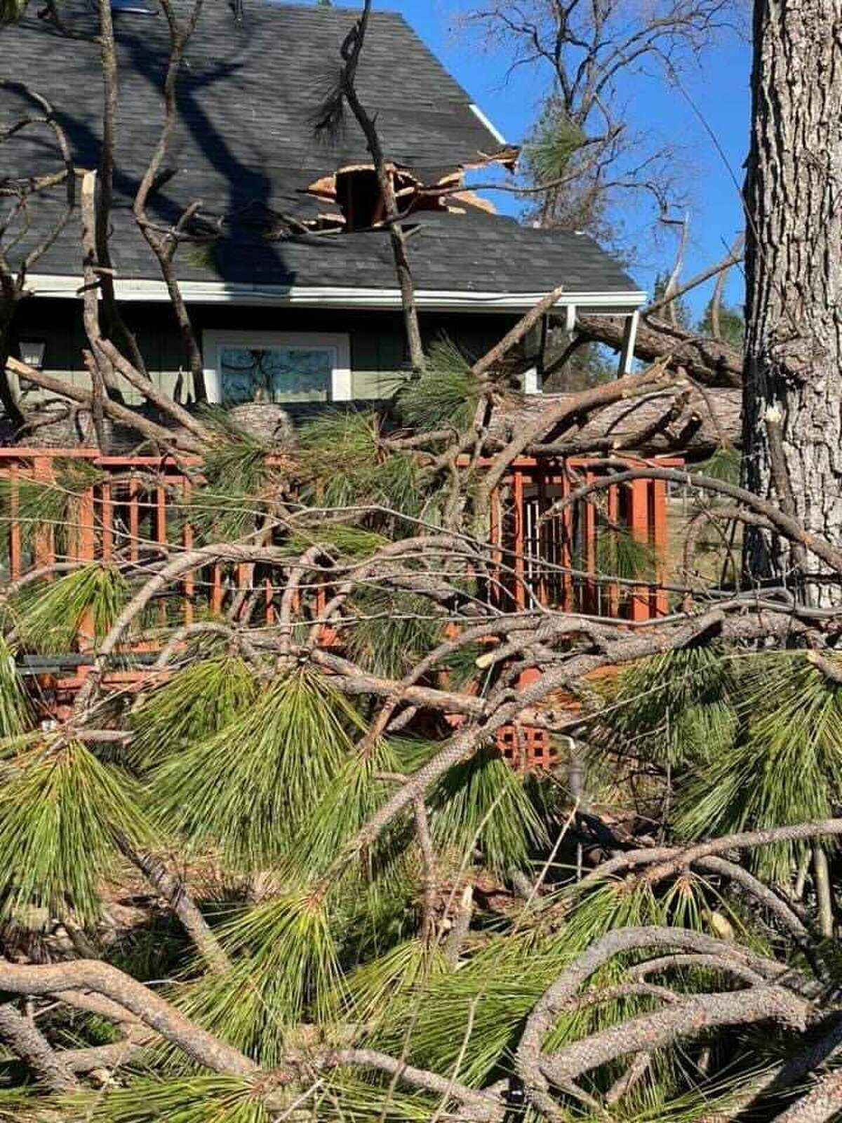 Damage in Mariposa, Calif., after a Jan. 18-19 wind event