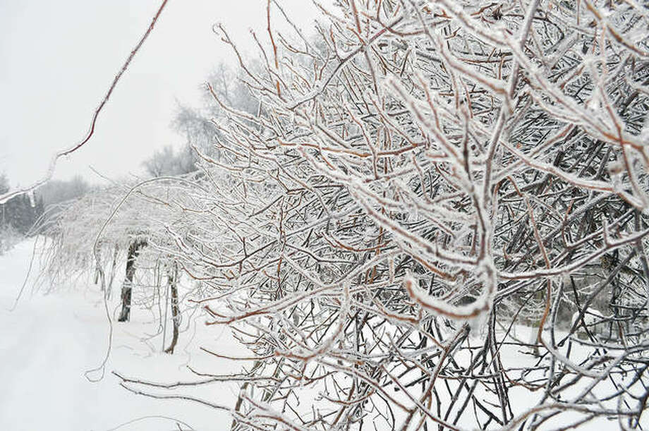 Winter ice can break plant and human limbs. Rock salt, which can be damaging to plants, is not the only way to clear it from paths. Photo: Lee Reich   AP
