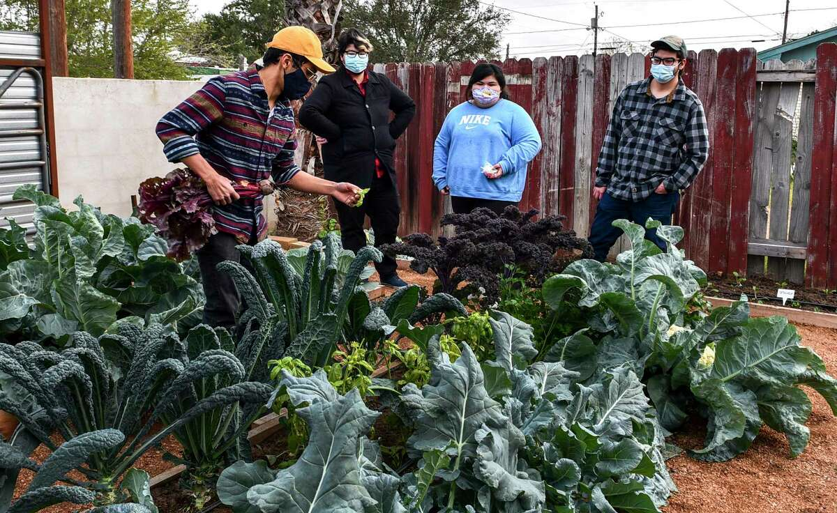 Red Wing United's Alec Martinez describes the different types of vegetation, Tuesday, Jan. 12, 2021 as he gives a tour of Red Wing United's community garden.