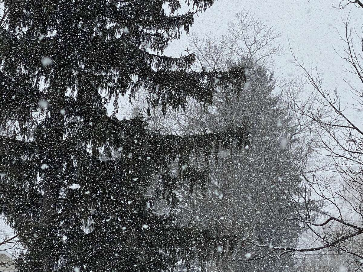 Heavy snow was falling Tuesday afternoon in Niskayuna as a storm moved into the Capital Region. Meteorologists said they expect the snow could fall at an inch an hour during parts of the storm which should end by Wednesday morning.