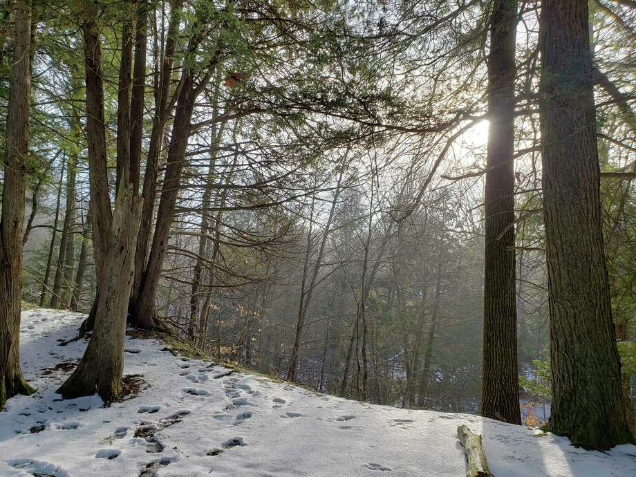The Spirit of the Woods Conservative Club will host a free guided snowshoe walk and hike on Jan. 30 at their 40-acre Brethren property. (Arielle Breen/News Advocate)