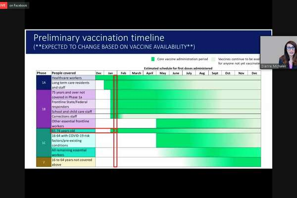 Dianne Michalek, vice president of marketing and corporate communications at Munson Healthcare, shares Munson Healthcare's predicted vaccination timeline during a virtual conference held Jan. 26. (Screenshot/Zoom)