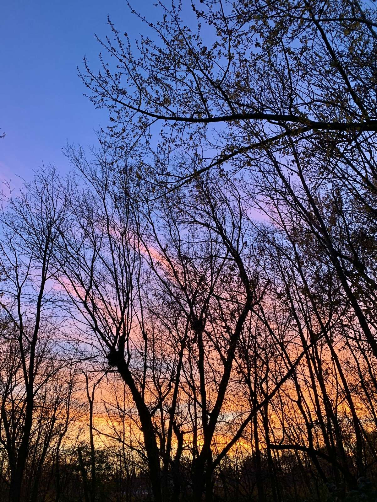 Taken in late November from Kathy Colman's backyard in Cohoes at sunset.