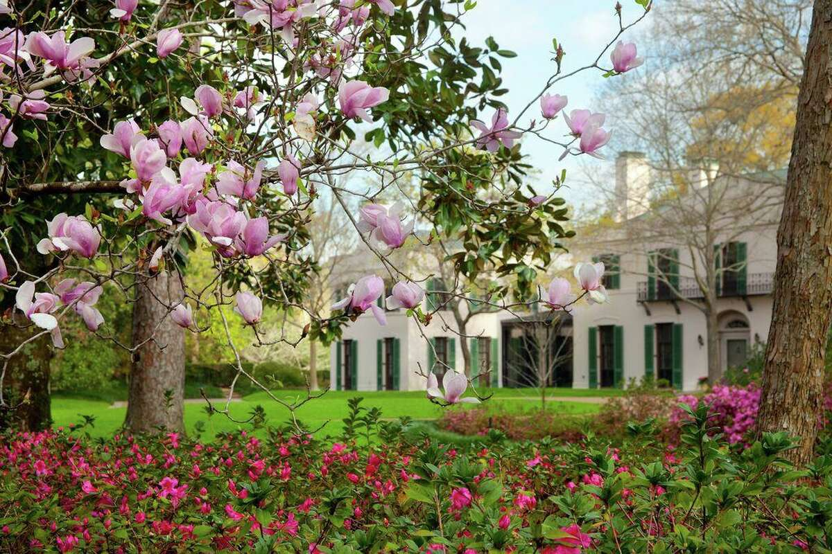 Bayou Bend is a popular stop on the Azalea Trail Home and Garden Tour. The event is shifting to an every-other-year format, so the next one won't be until March 2022.