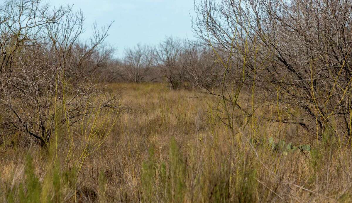 A portion of the East Gate Industrial Park land, which sits east of Loop 410 between I-10 and Houston Street on the East Side, is seen Wednesday, Jan. 27, 2021. The San Antonio planning commission approved a variance Tuesday to the city's tree ordinance which allows the developer to preserve only 70 percent of significant trees and 17 percent of environmentally sensitive area trees.