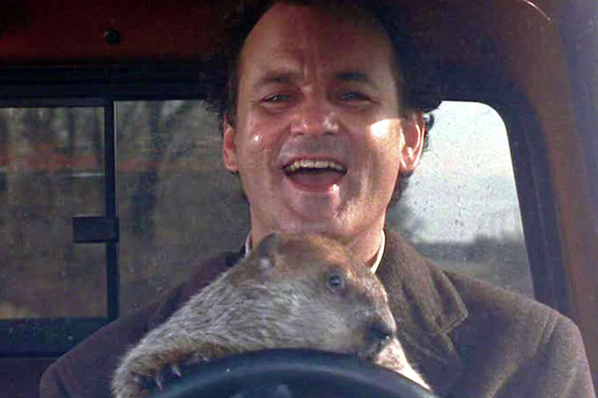 """""""Groundhog Day""""is available to stream on Amazon for $2.99"""