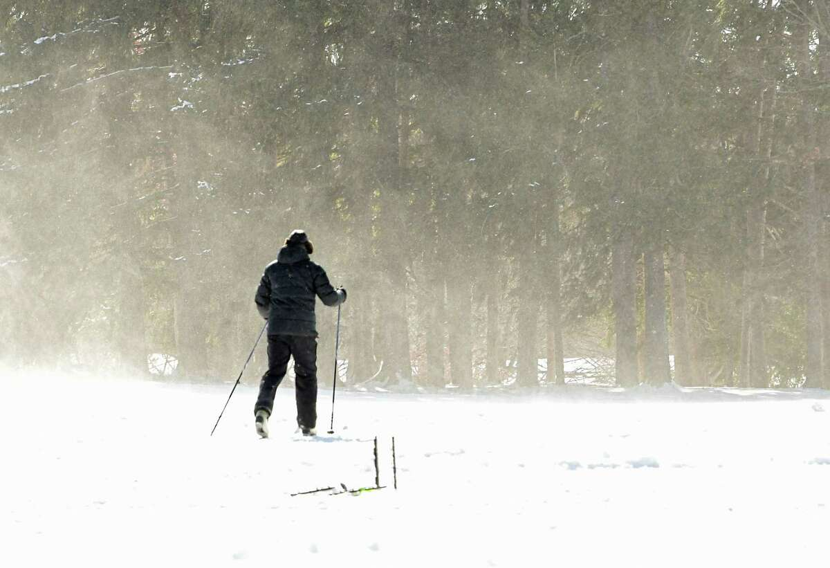 A cross-country skier encounters a cold blustery wind at Capital Hills at Albany Golf Course on Thursday, Jan. 28, 2021 in Albany, N.Y. (Lori Van Buren/Times Union)