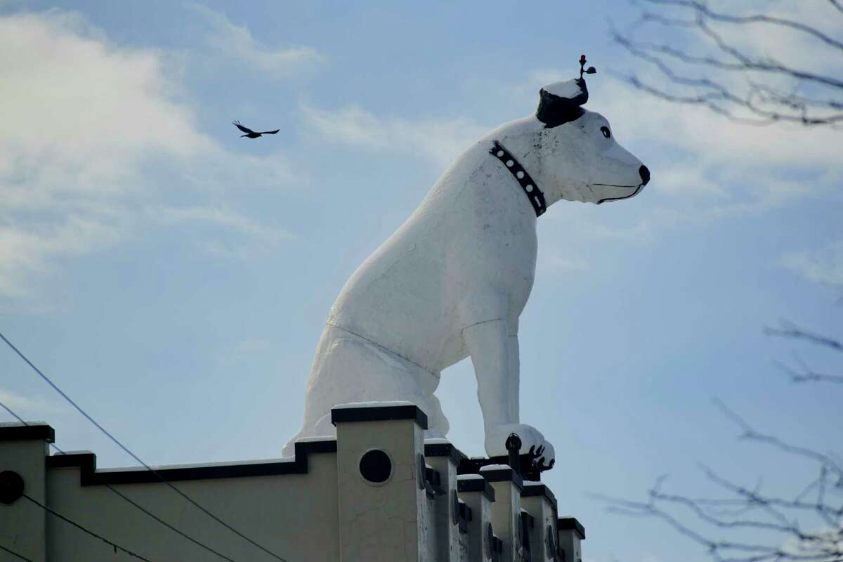 A view of Nipper, the RCA mascot, on top of the former RTA Distributors building in Albany's warehouse district on Thursday, Jan. 28, 2021, in Albany, N.Y. (Paul Buckowski/Times Union)