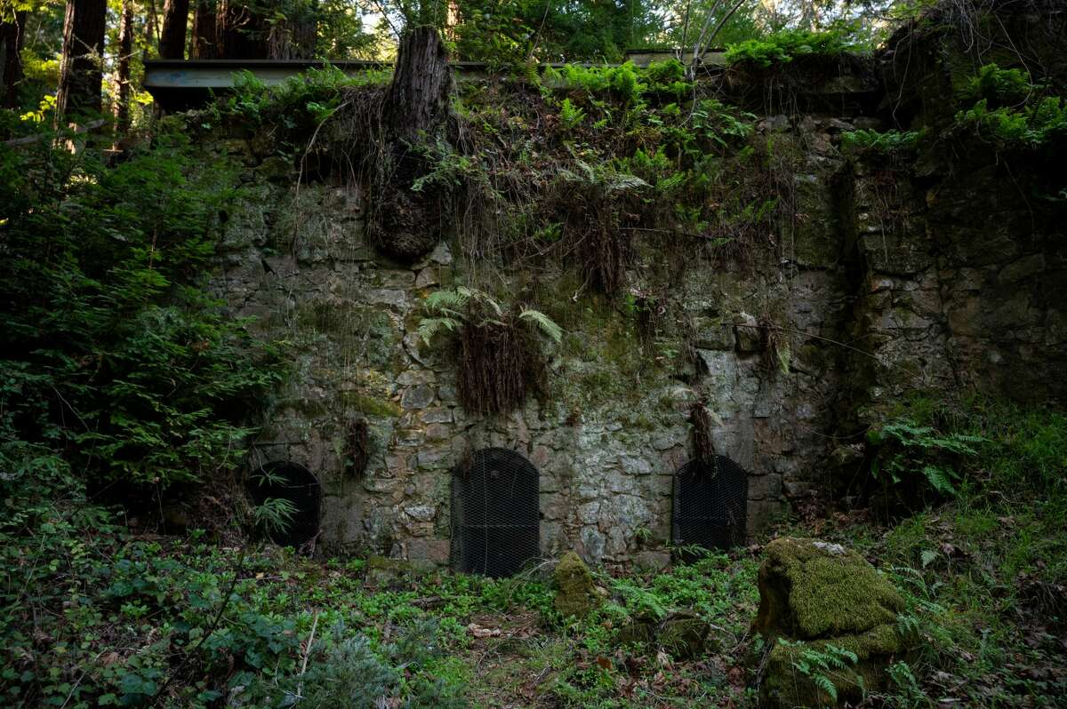 A look at the the lime kiln in The Pogonip, one of three greenbelt open space preserves in Santa Cruz's city limits.