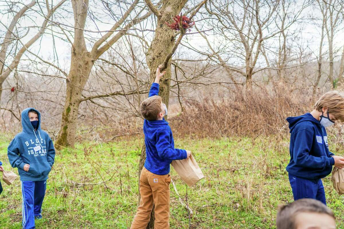"""The nonprofit ASAP! will offer an in-person program, """"Look, Build, Play!,"""" a natural building workshop where participants will develop their ideas in virtual sessions, then bring them to life outdoors at Macricostas Preserve in Washington."""