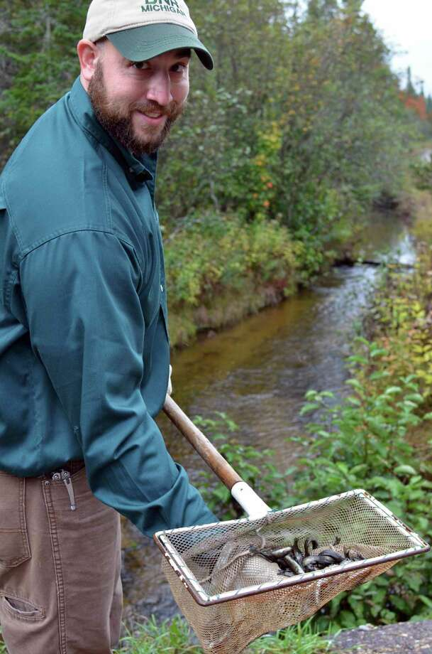 Young steelhead being stocked into the Anna River in Alger County are shown. (MDNR/Courtesy Photo)
