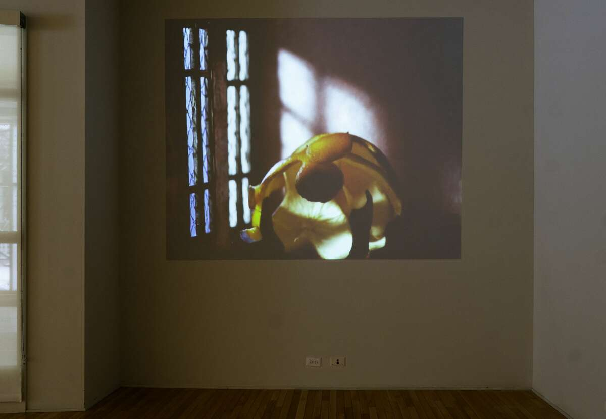 Laleh Khorramian, I Without End, 2008. Time-lapse animation, color with sound, single channel. Photo Wm Jaeger