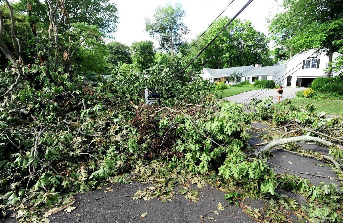 A fallen tree during Tropical Storm Isaias in August 2020 cut power and access to the neighborhood. Naugatuck Valley Council of Governments is hoping to craft a plan to better handle national disasters and is seeking public input.