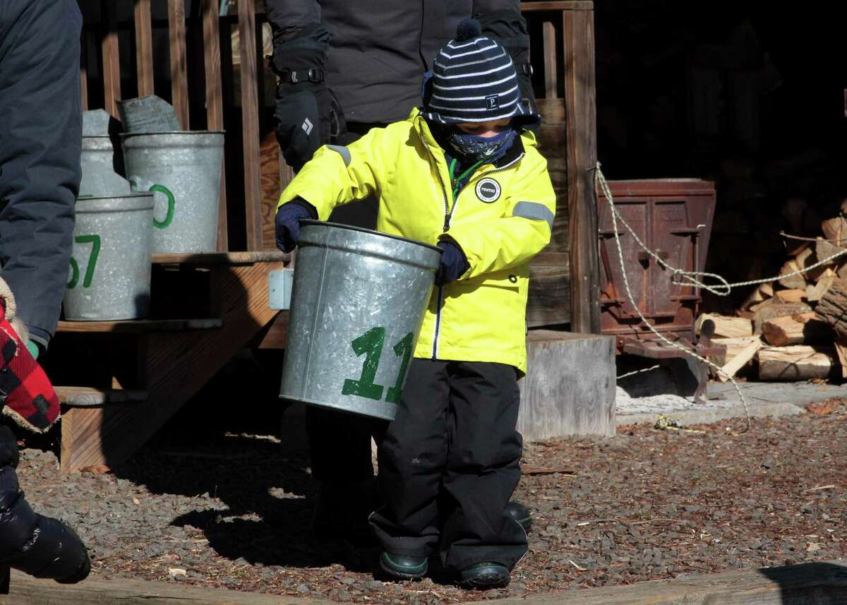Nathaniel Fisher, 3, chooses the metal bucket the family will use to gather sap to make maple syrup at the New Canaan Nature Center in New Canaan on Saturday.