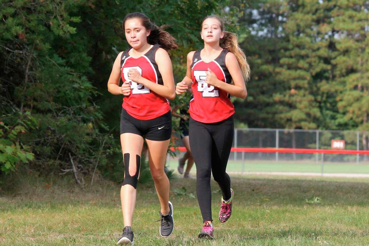 Bear Lake's girls cross country team enjoyed its highest numbers in several years in 2020. New athletic director Ty Schafer hopes to continue that trend. (News Advocate file photo)