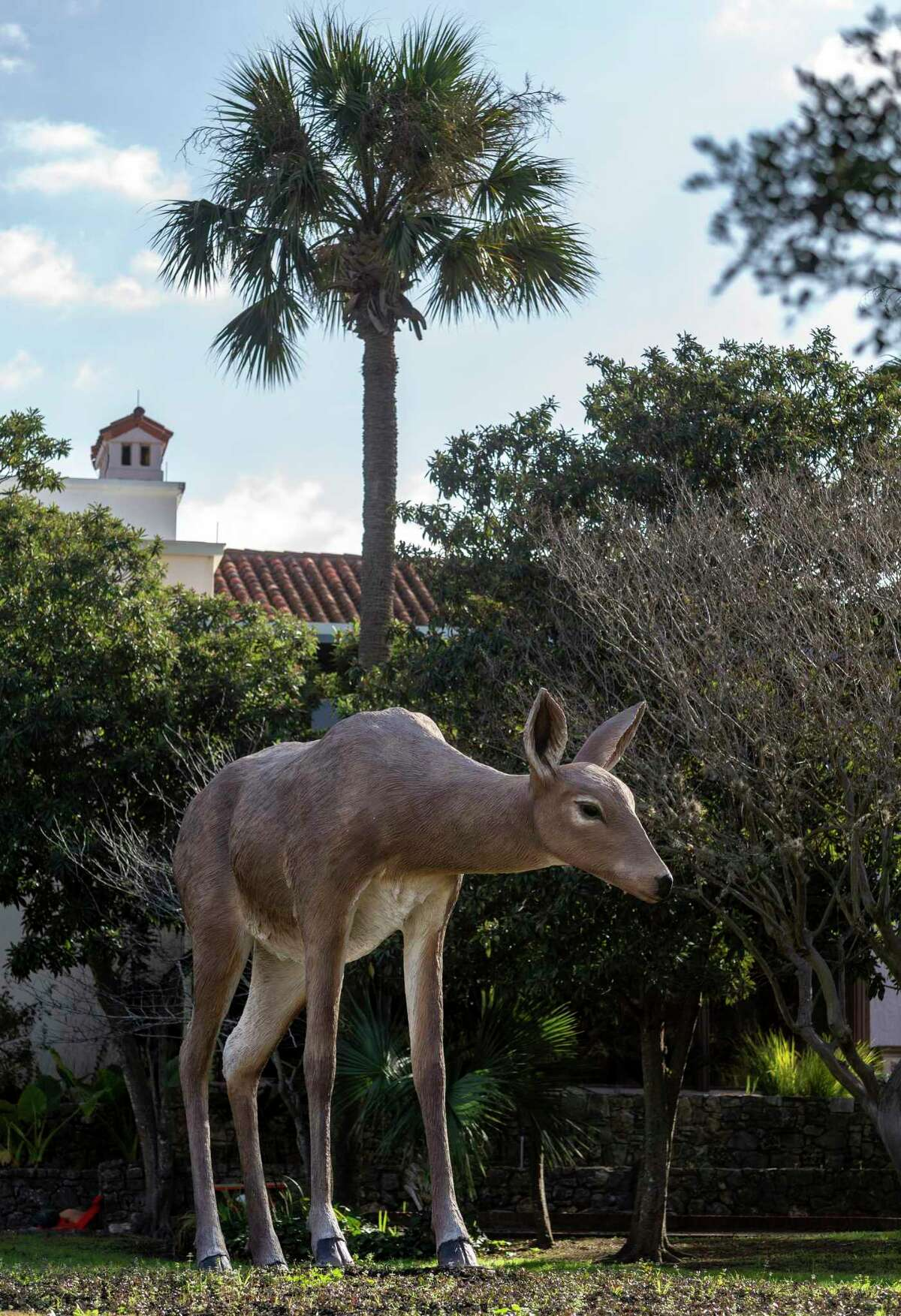 """Chicago-based artist Tony Tasset's """"Deer,"""" which is on display at the McNay Art Museum, stands 12 feet high."""