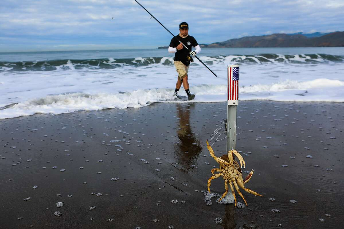A male crab rests against Robert Nguyen's ground spike rod holder as the cabdriver fishes for Dungeness crabs at Baker Beach in San Francisco.