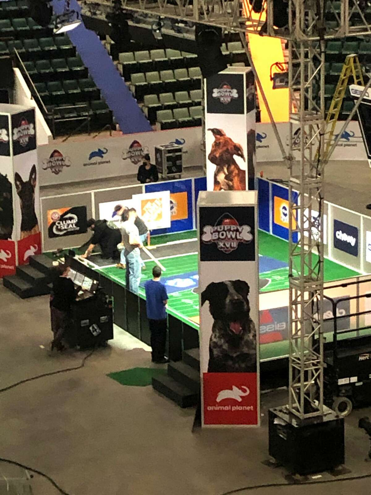 """Preparations in October at Cool Insuring Arena in Glens Falls for the filming of the Animal Planet show """"Puppy Bowl XVII""""airing Sunday, Feb. 7, 2021, on the cable channel. (Provided photo.)"""