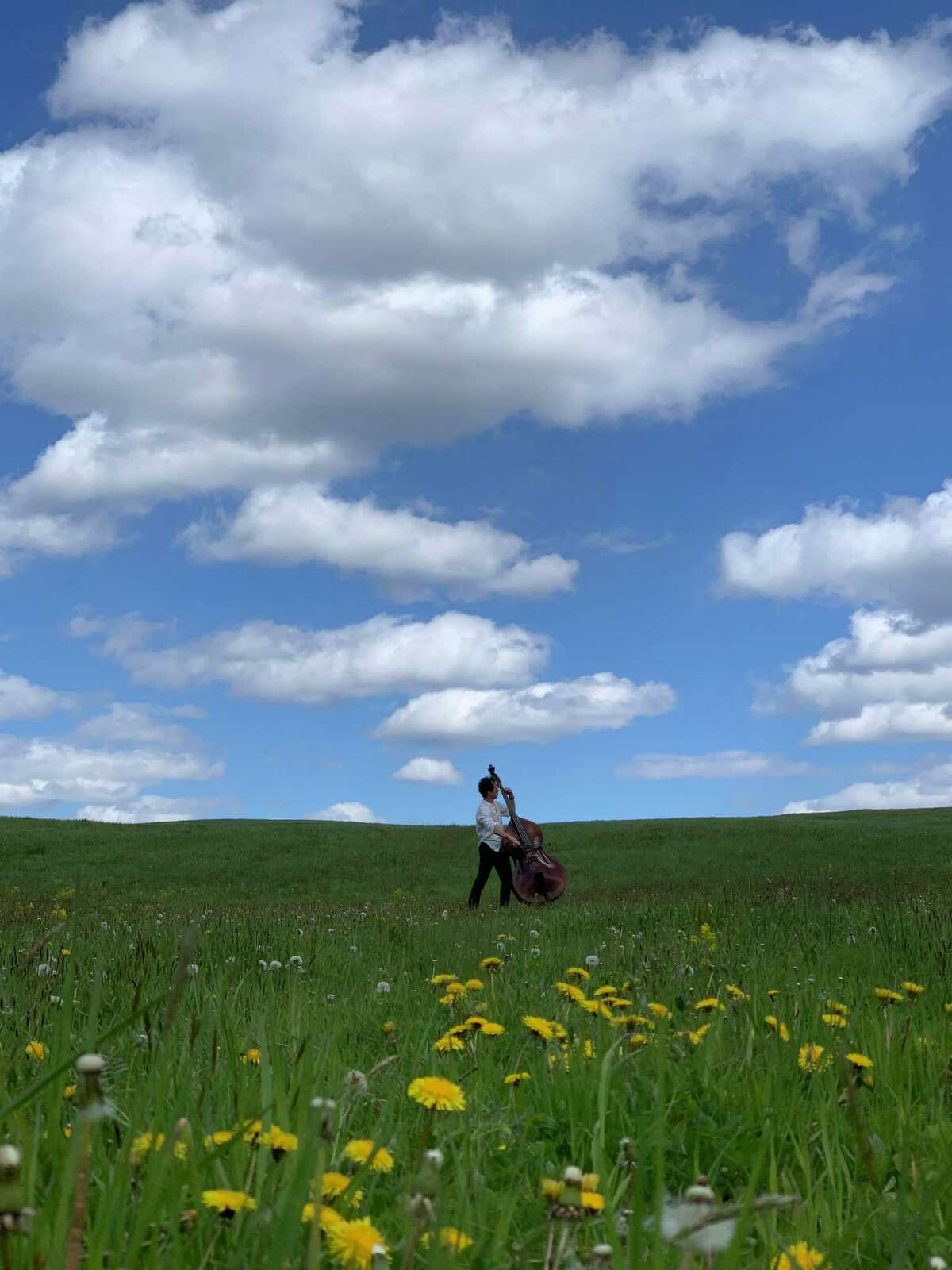 A musician in a field of wildflowers at the Five Senses Festival in Litchfield County