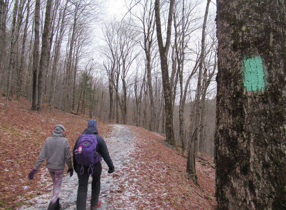 Gillian Scott and her daughter walk the Long Path through the Partridge Run Wildlife Management Area in Berne.