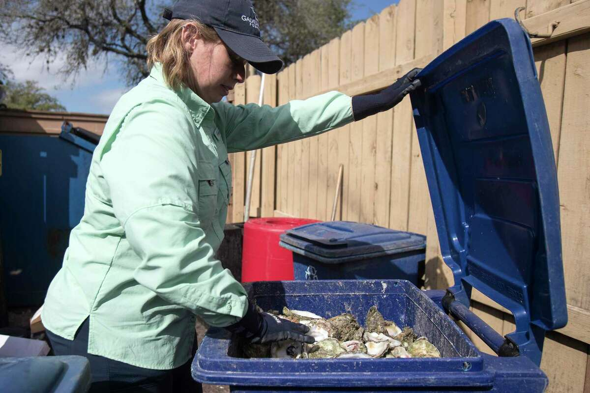 Shannon Batte, habitat restoration technician for Galveston Bay Foundation, collects discarded oyster shells from a restaurant Wednesday, Feb. 3, 2021 in Friendswood. The foundation helped build three oyster reefs in Galveston Bay to support the oyster population, hard-hit by storms. Starting this week, the reefs were officially closed off so oysters can grow. After 21 months, two will be opened for oysters to be harvested. The goals is to try to show that there is a more sustainable model for oyster harvesting, with conservation built in.