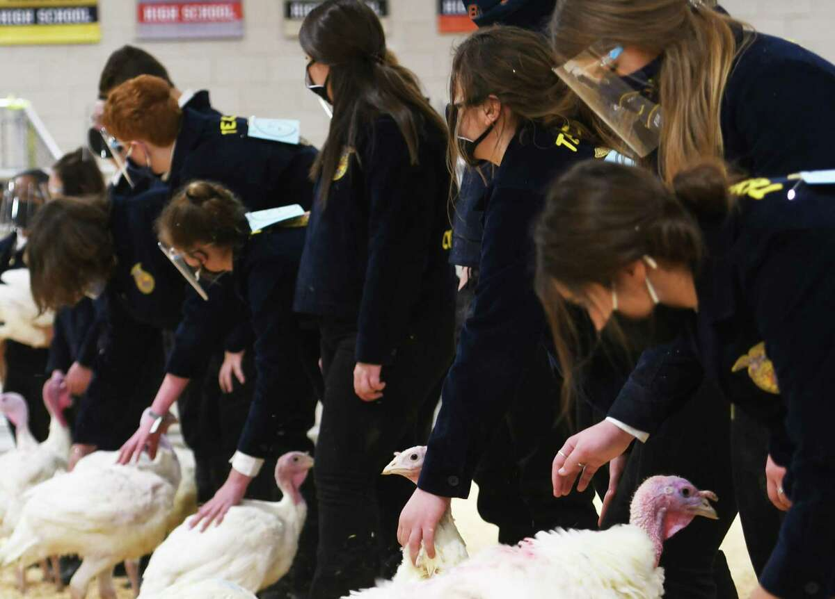 Cy-Fair ISD students participate in the 27th annual CFISD Livestock Show and Sale.