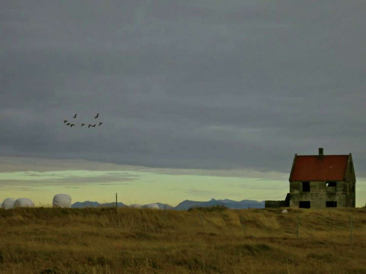 A scene from Iceland/