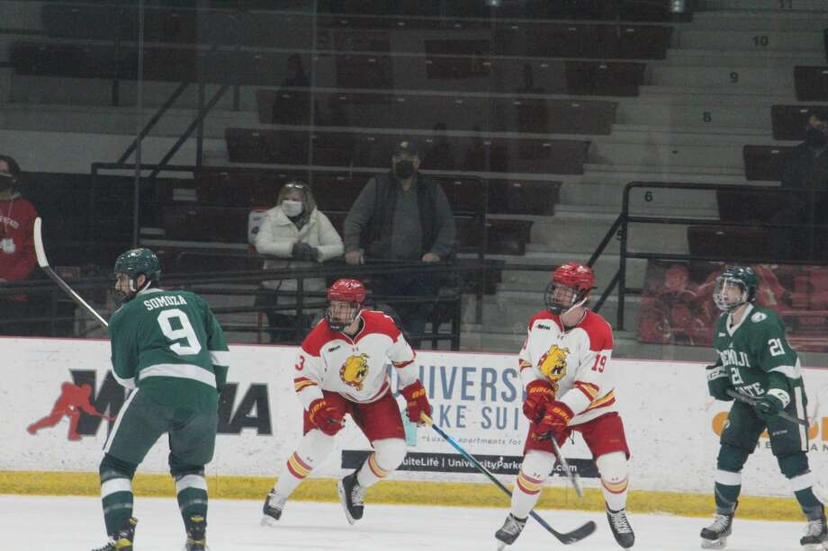 Ferris' hockey team fired out to a 2-0 lead but lost 7-2 to Bemidji State on Saturday. Photo: John Raffel