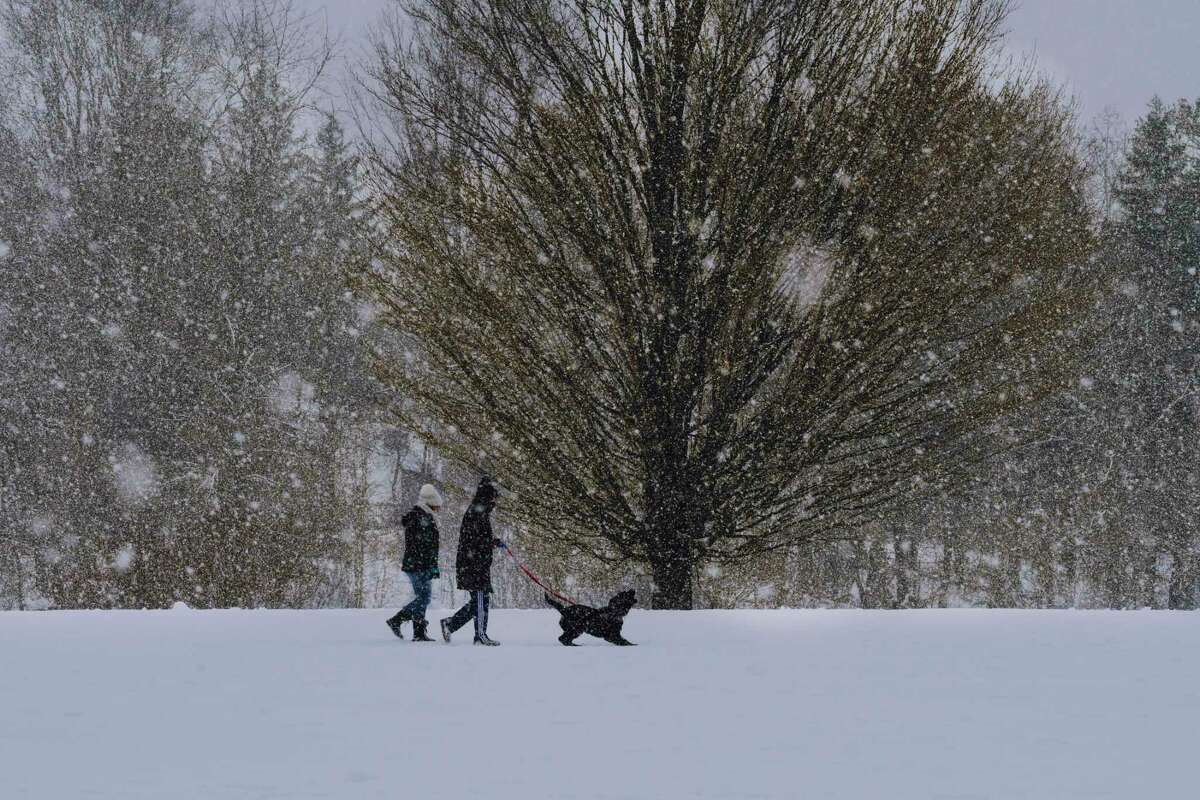 Two people walk a dog as snow falls at Capital Hills at Albany golf course on Sunday, February 7, 2021, in Albany, N.Y. (Paul Buckowski/Times Union)