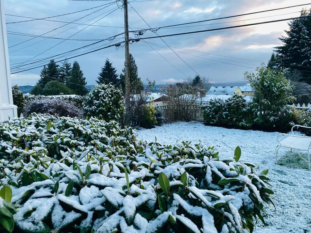 Snow blankets parts of West Seattle on February 8, 2021.
