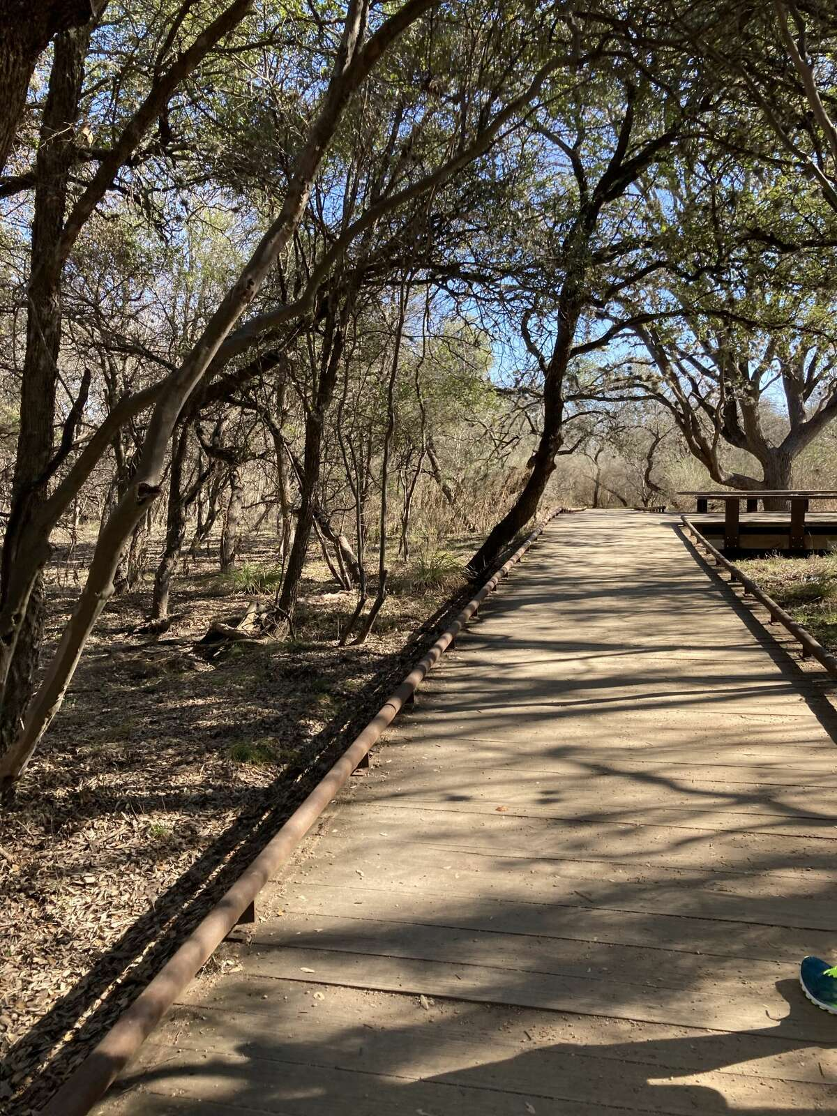 SHORT WALK FROM PARKING In case you only want to visit the land bridge, don't worry, the walk is not long. There are two major parking areas at the park with one entrance on Blanco Road and another on Northwest Military. The East entrance on Blanco Road has the shortest distance of walking with only two trails while the Northwest Military Entrance has three trails. However, both entrances with connected trails will get you to the land bridge in about a 20 minute walk since the bridge is located at the center of the park. This is good news if you just want a quick exercise trip to explore. There are also nice views through shaded trees and board walks with plenty of spots to relax along the way.