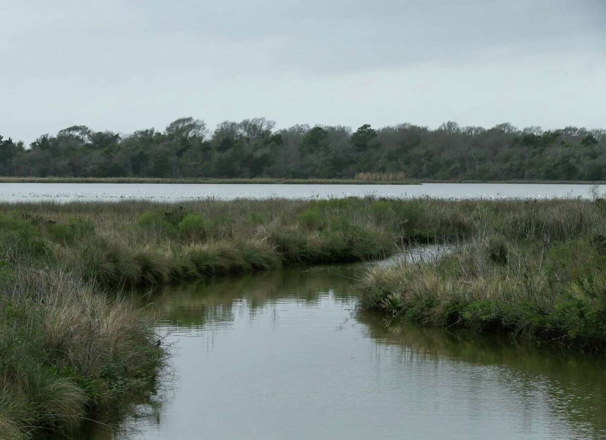 Water Oak Gully empties to Ijams Lake, which is just south of Negrohead Lake, photographed Monday, Feb. 8, 2021, in Baytown, Texas. Rodney Ellis and other city, county, state and federal officials gathered are demanding that Negrohead Lake be renamed Lake Henry Doyle as envisioned in the state law.