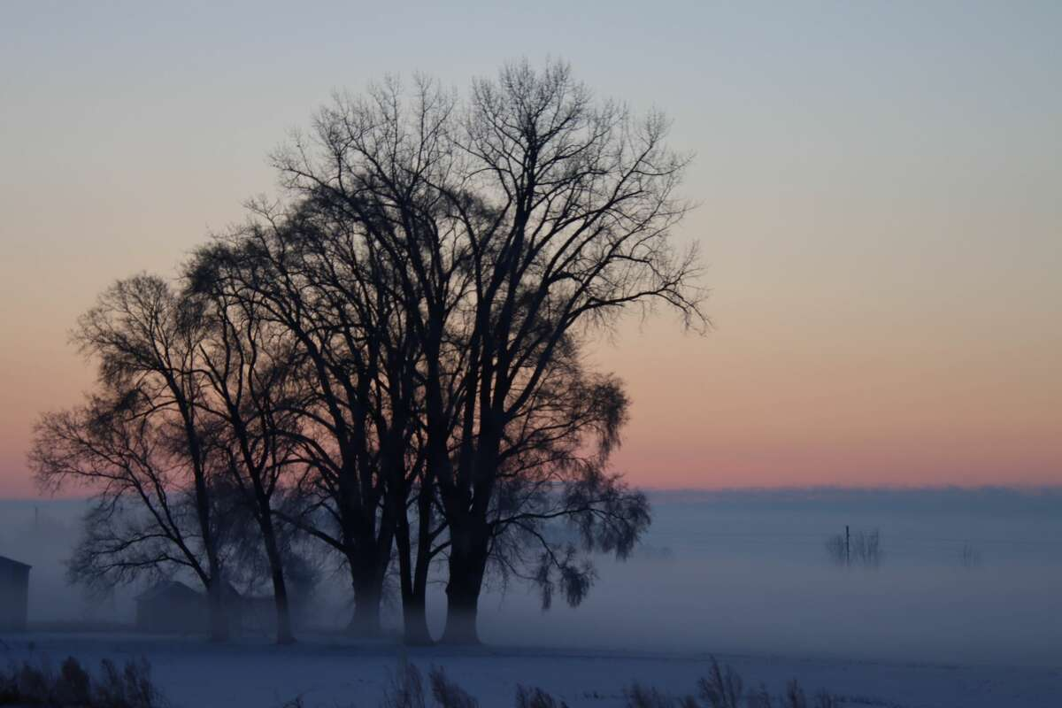 Weather conditions in Huron County created a picturesque scene Feb. 9.