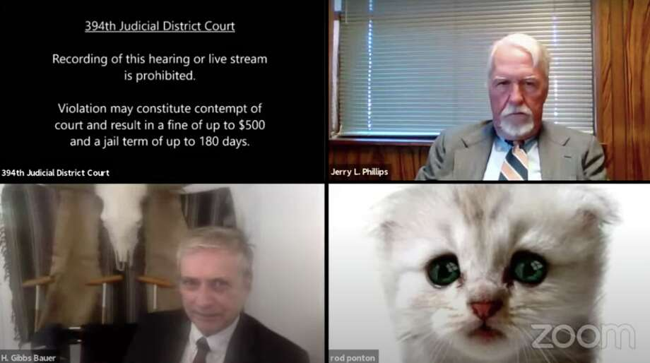 Presidio County Attorney Rod Ponton accidently used a cat filter during a court hearing Tuesday. Photo: 394th Judicial District Court
