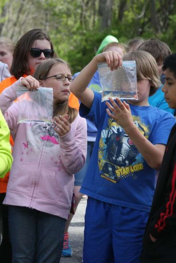 In this file photo, Brethren elementary students examine their salmon before releasing them into the wild at Tippy Dam as part of the Salmon in the Classroom program. Photo: File Photo