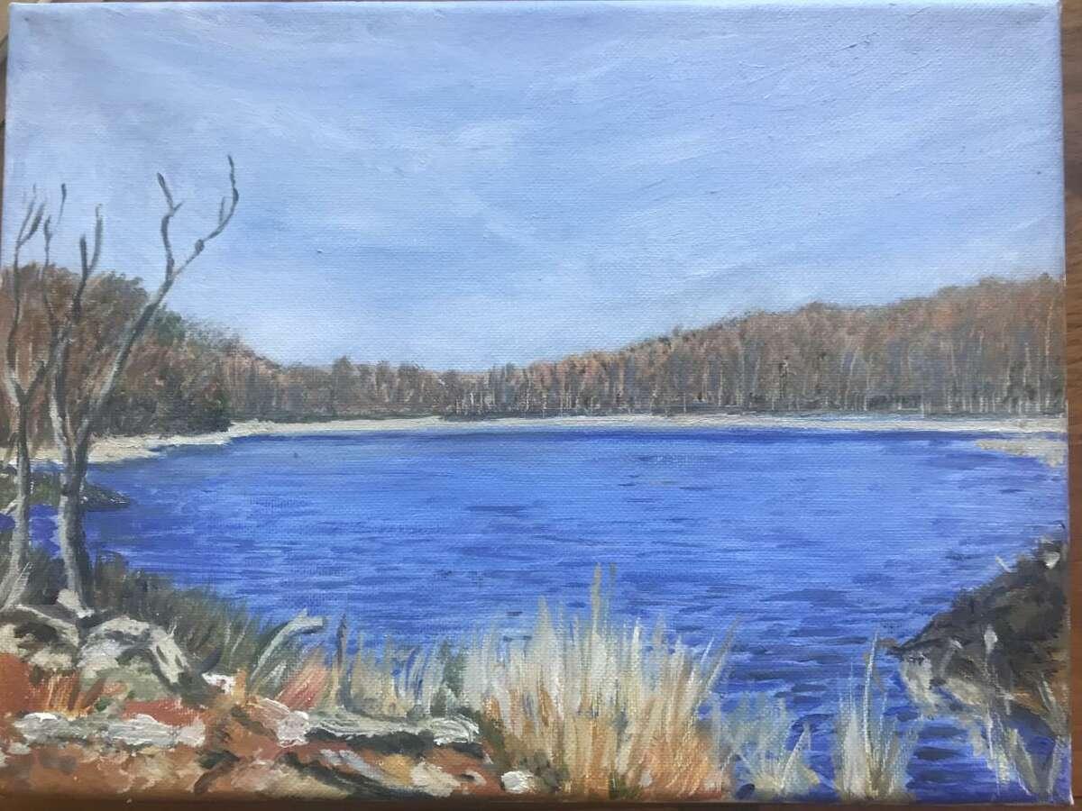 Beaver Pond, Baldwin Preserve, Roxbury Oil on canvas
