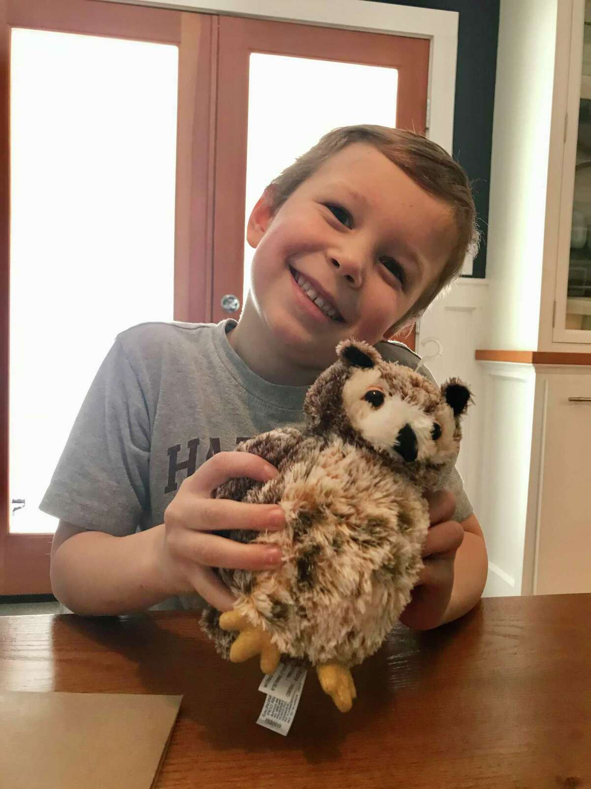 Henry Sampson, 5, of Wilton, with the plush toy owl from the Woodcock Nature Center owl pellet take-home kit.