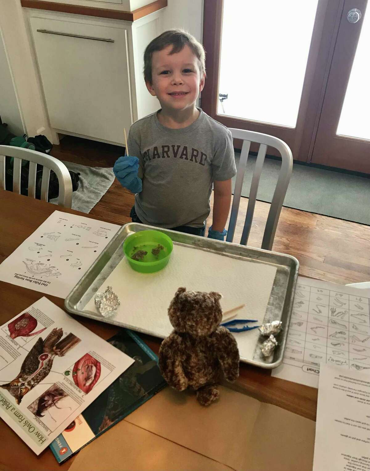 Sampson dissected the owl pellets to discover what bones of prey were inside. He then matched up what he found to the diagrams provided by Jennifer Bradshaw, early education coordinator.