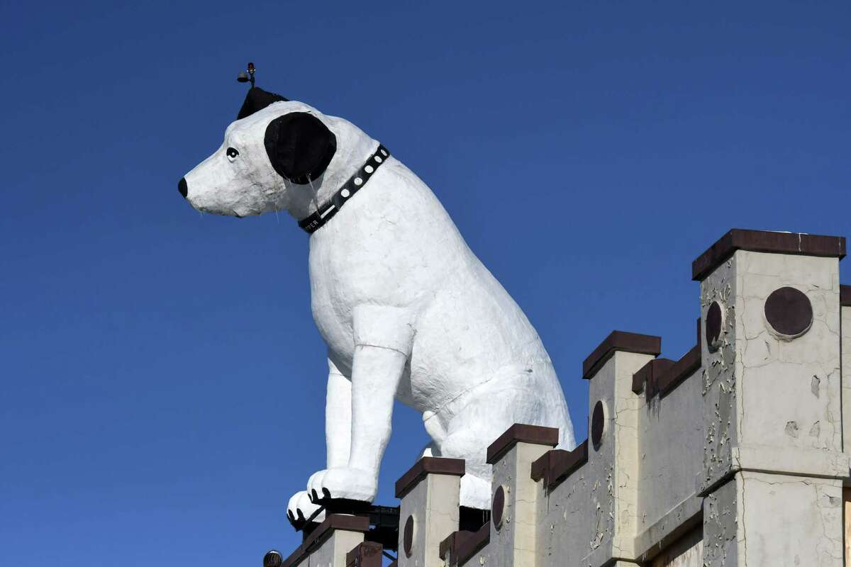Nipper, a longtime Albany landmark, sits atop the former RTA building at 991 Broadway on Wednesday, Feb. 10, 2021, in Albany, N.Y. An appliance company in Long Island is interested in purchasing the 28-foot fiberglass RCA dog and taking him to Long Island. They say he has been their store mascot for 75 years. (Will Waldron/Times Union)