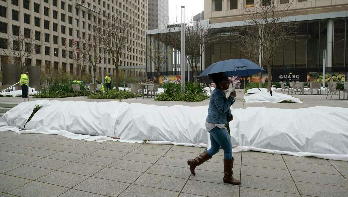 Covered plants in downtown Houston in advance of a previous freeze. Michael Potter says in advance of Monday's frigid weather, covering plants is the simplest, most practical way to protect against a frost or freeze.