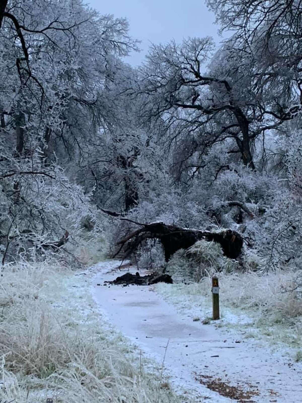 On Friday, Enchanted Rock announced it will be closed for the day on its Facebook account, writing the ice accumulations have made conditions in the park hazardous for visitors.
