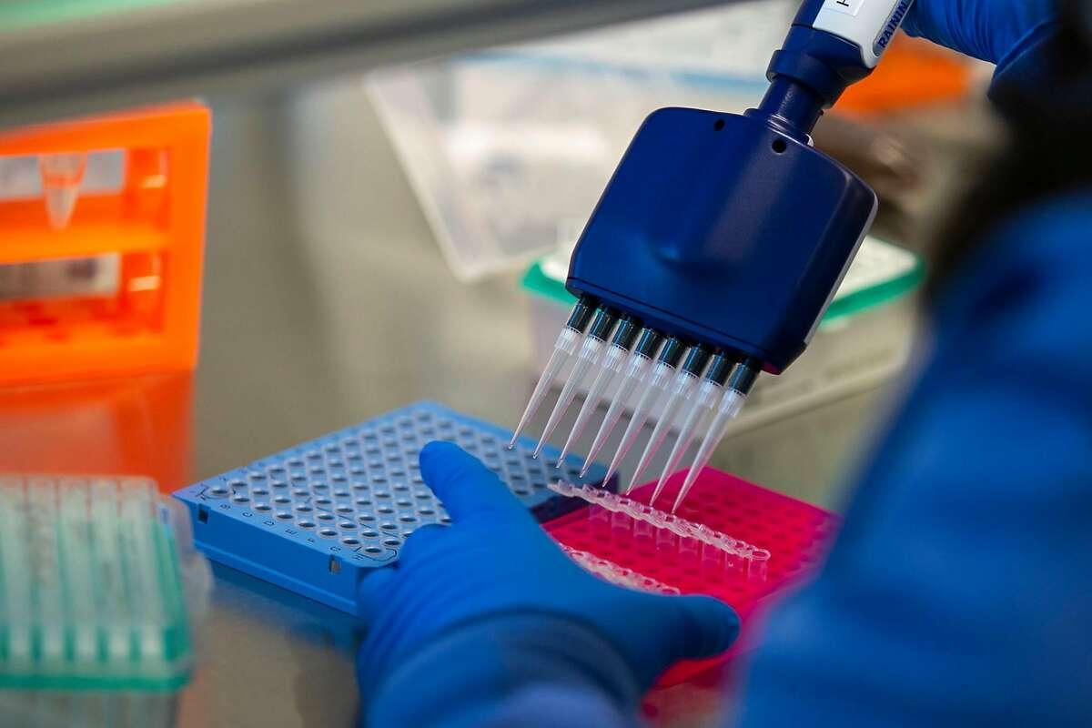 Research associate Paula Serpa processes process samples at the Chan Zuckerberg Biohub in San Francisco in July.